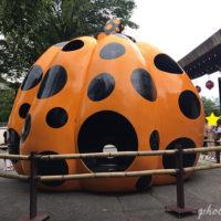京都のフォーエバー現代美術館にて草間彌生コレクション